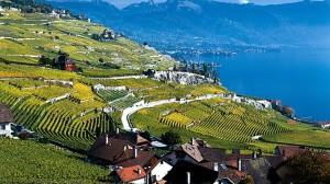 cn_image.size.switzerland-vineyards-of-lavaux